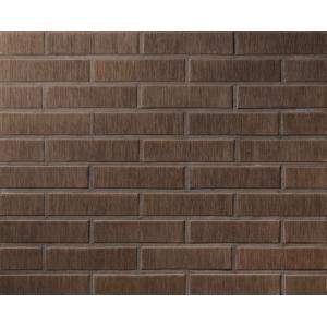 Пустотелый кирпич Lode Asais Brunis 250*120*65 мм коричневый штриховая M300