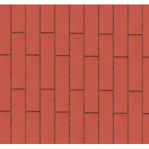 Клинкерная тротуарная брусчатка Lode Janka красная шероховатая 250*45*65 мм